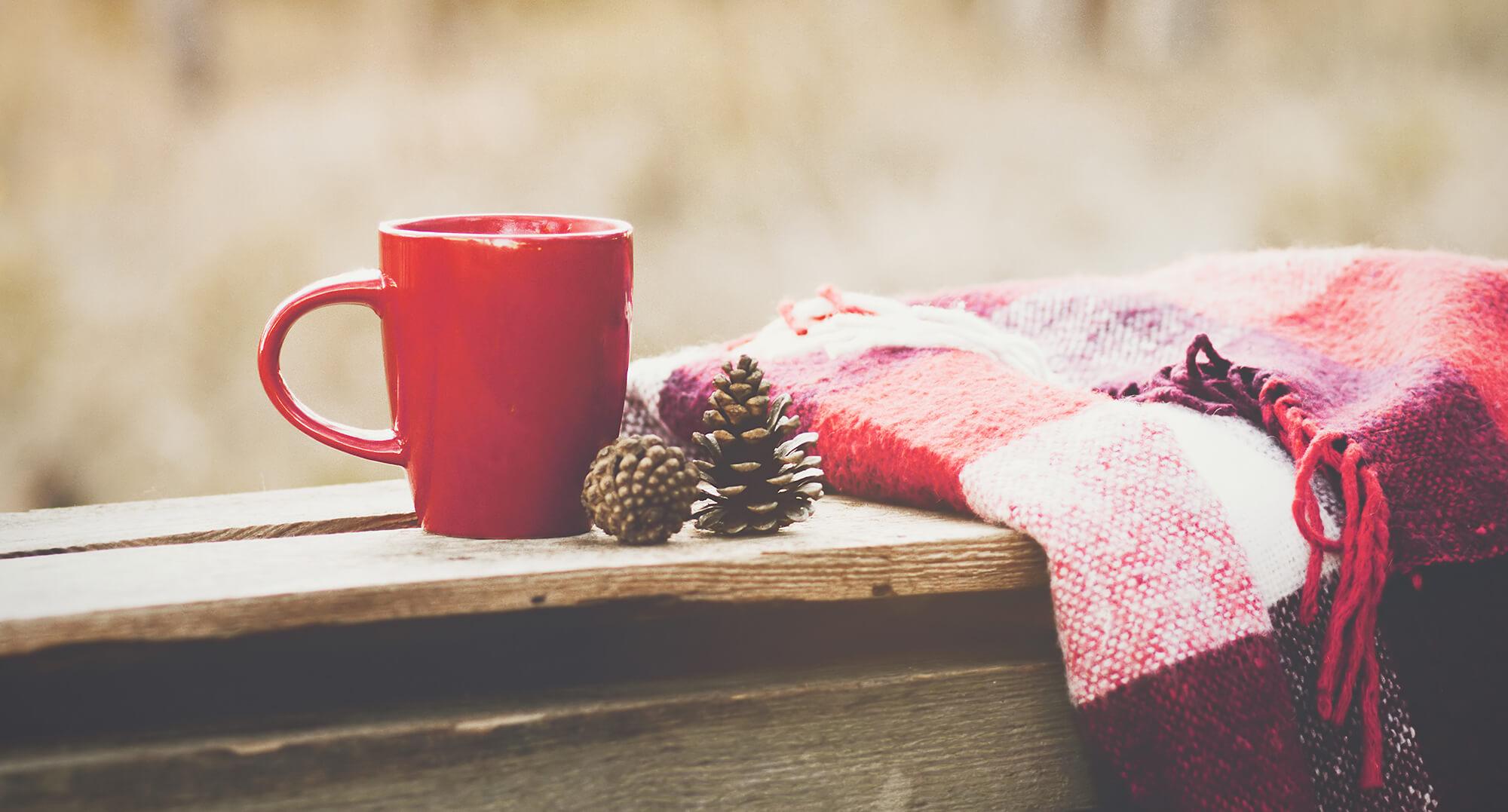 THALHAMMERs Exklusiv Winter Terasse